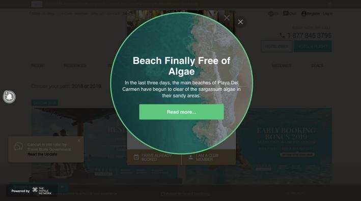 Algae-Layer