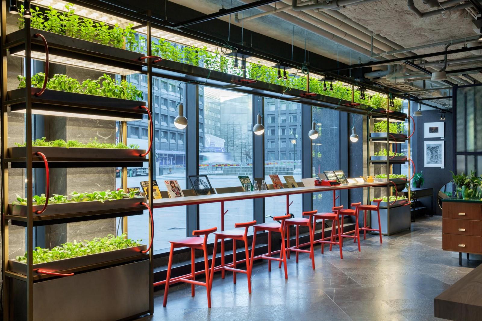 hobo-hotel-urban-farming-environmental-friendly